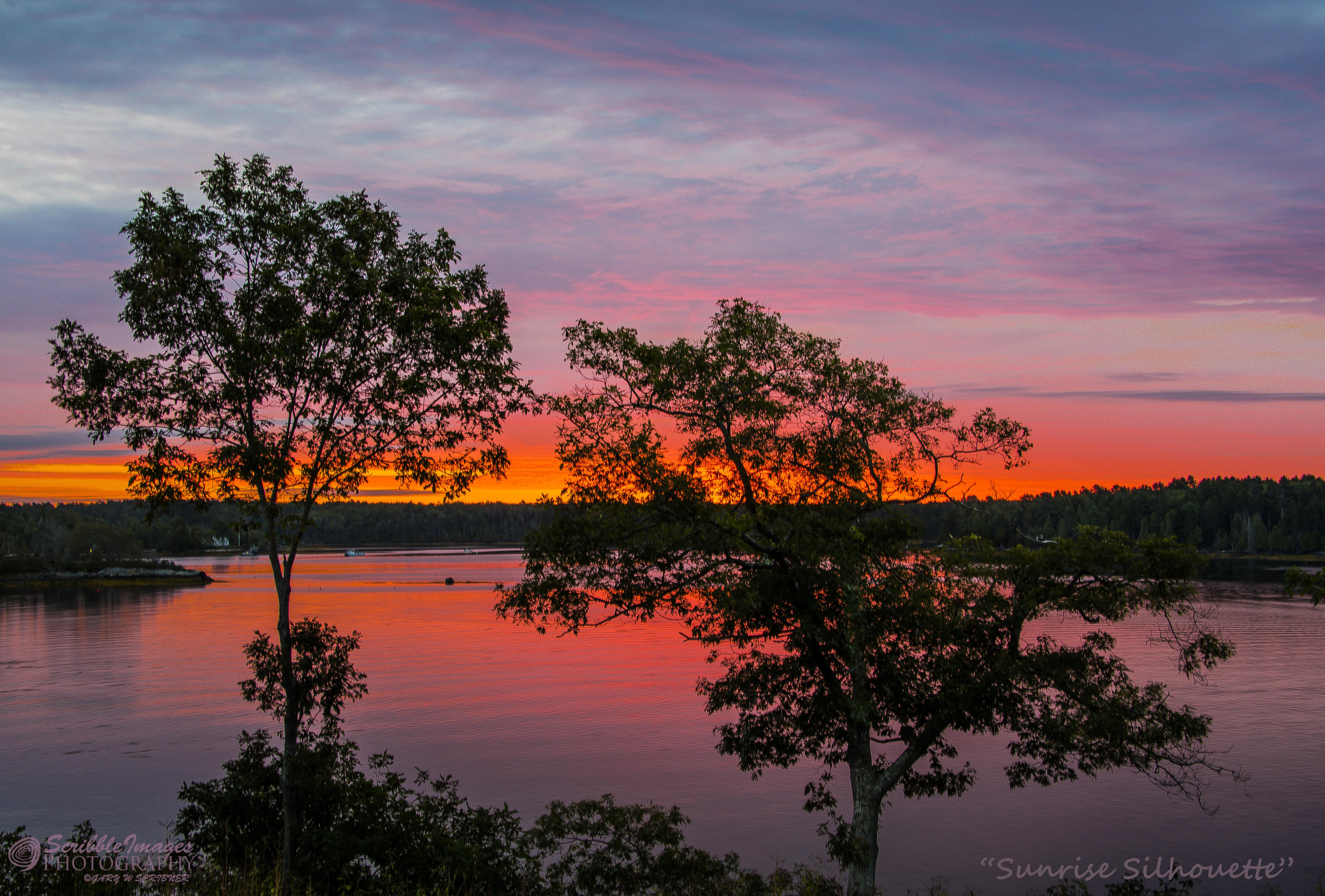 D75_6541 Sunrise Silhouette
