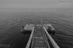 Floating Dock at Camp Forever
