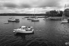 _D853083 Cundy's Harbor Flotilla-5