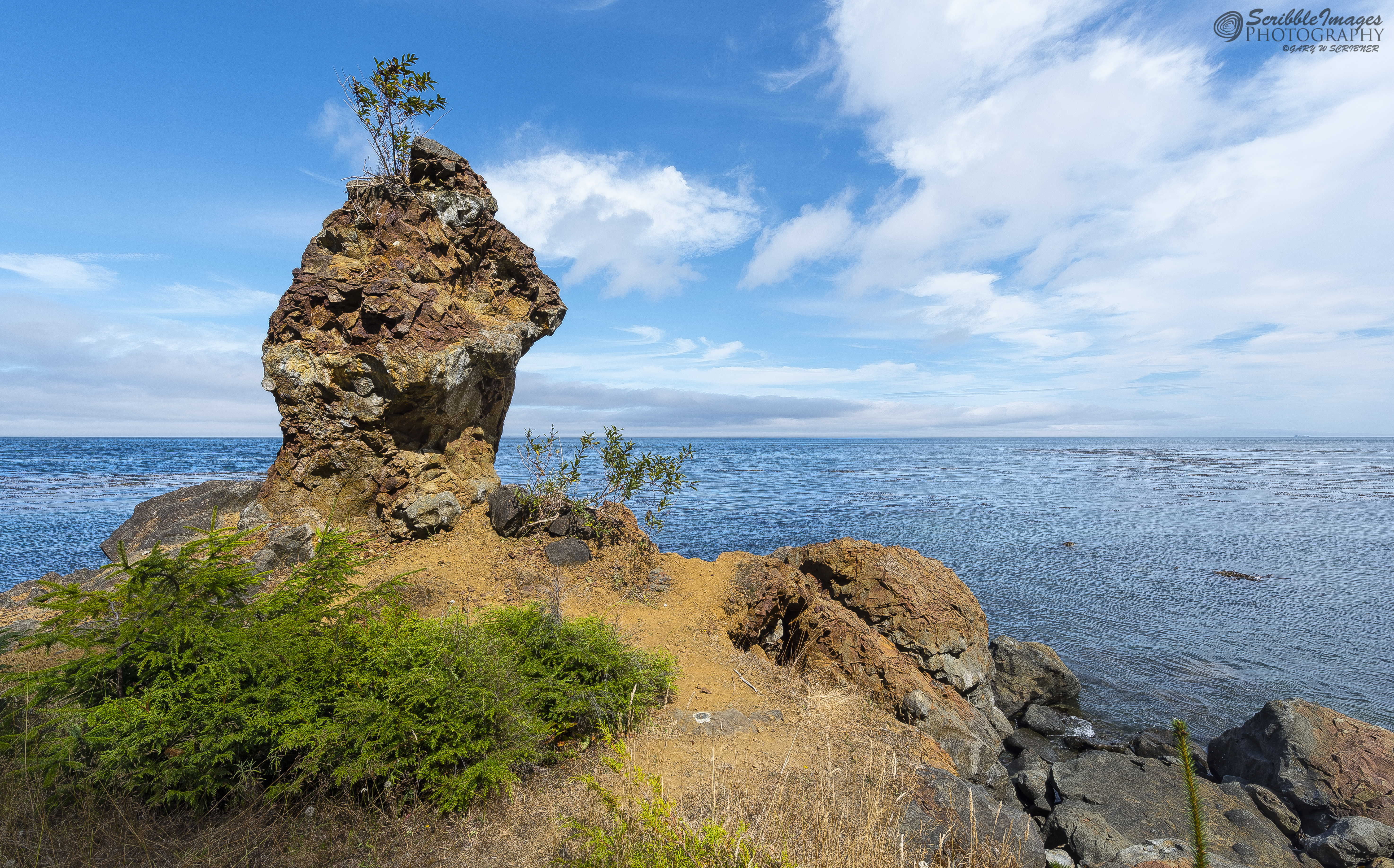 Formations on Route to Cape Flattery