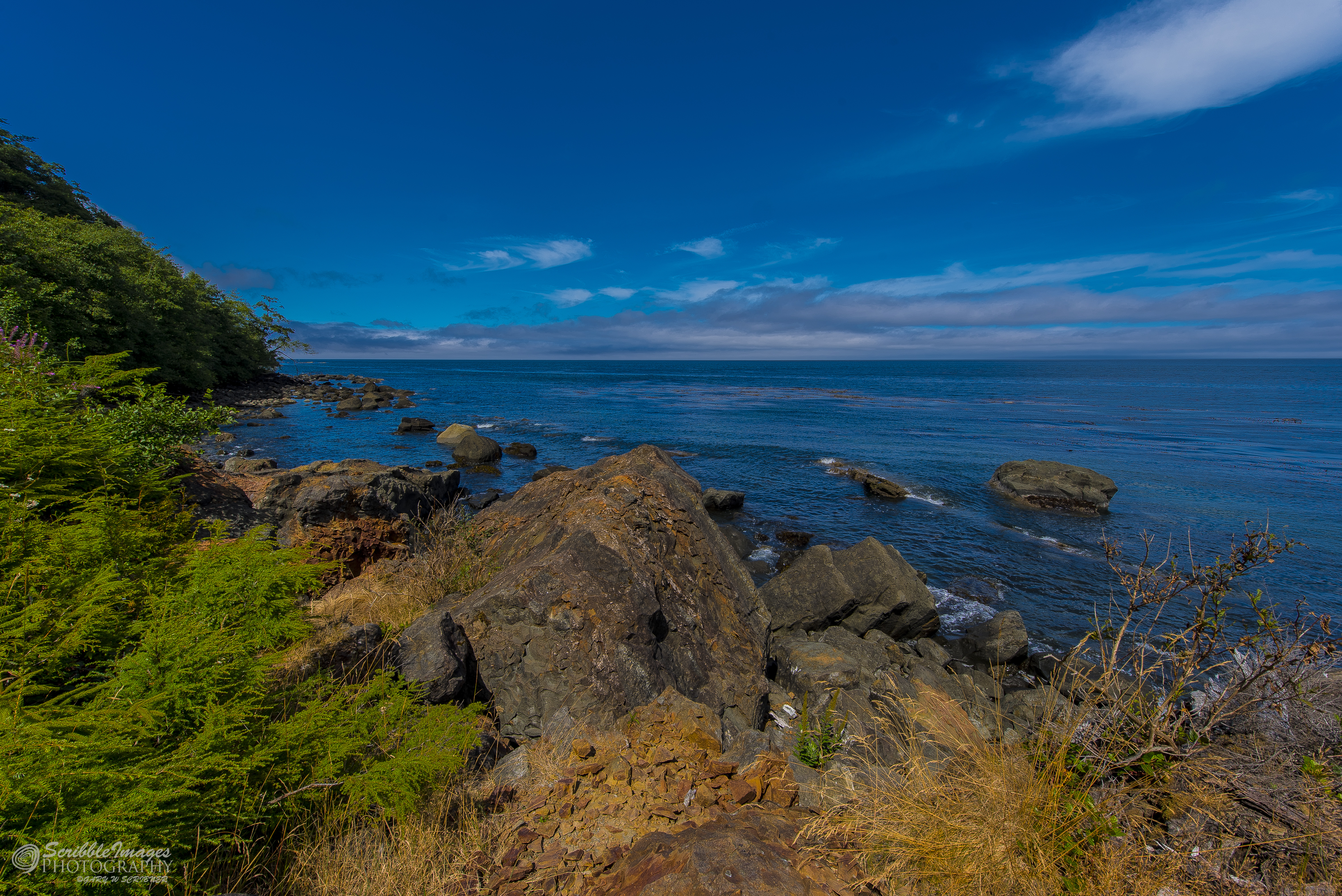 On the road to Cape Flattery