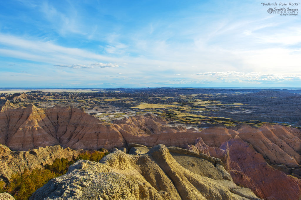 Badlands Rose Rocks