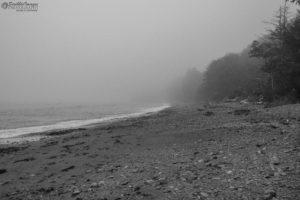 Rialto Beach Mystery