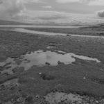Tidal Flats -  Island of Mull, Scotland GBR