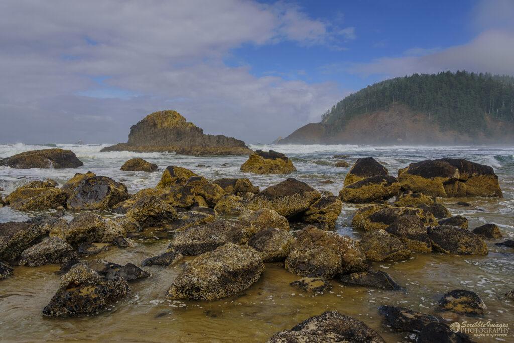 """Coral-Encrusted Rocks on a Beach"""